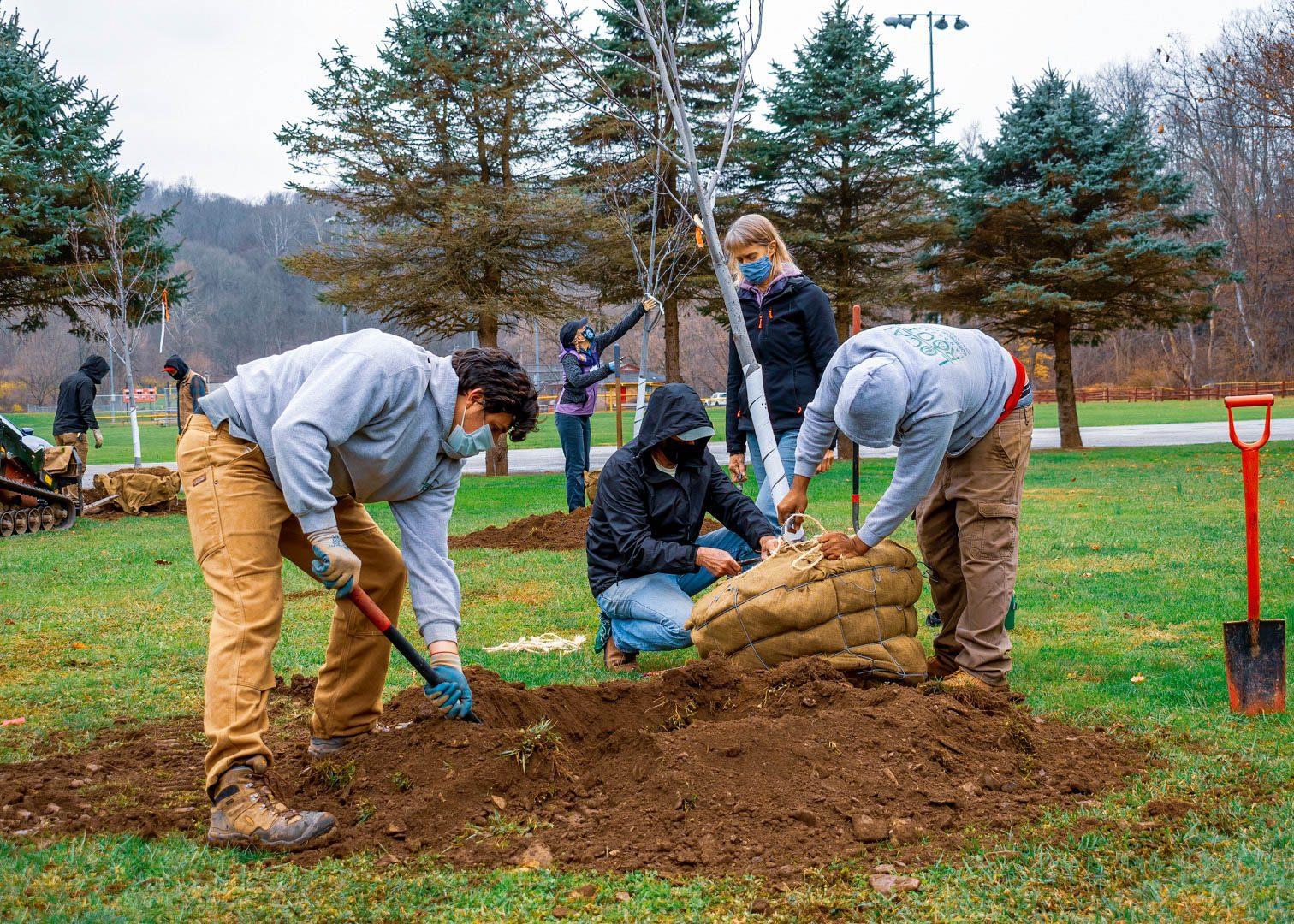 Fox Chapel, PA Landscape Design Services